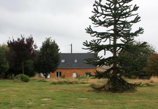 Maison à Jupilles Sarthe - Idéal randonnées en Forêt de Bercé Calme ma...