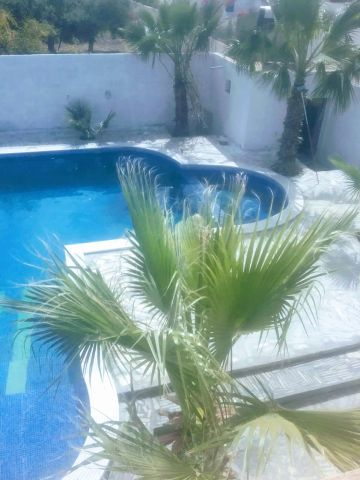 House in Djerba midoun - Vacation, holiday rental ad # 11372 Picture #19