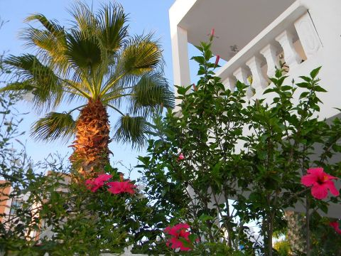 Haus Djerba   - 6 Personen - Ferienwohnung N°11511