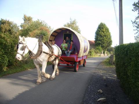 Caravane à Gommegnies à louer pour 3 personnes - location n°11554