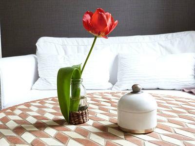 Appartement Dijon - 2 personnes - location vacances  n°12222