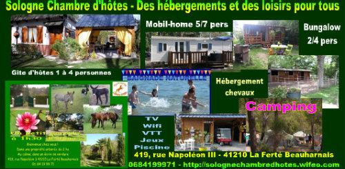 Gite La Ferté Beauharnais - 4 personnes - location vacances  n°1993