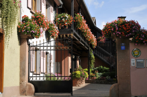Gite in Bergheim for   2 •   private parking