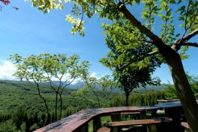 Gite in Aleu - Vacation, holiday rental ad # 2736 Picture #2
