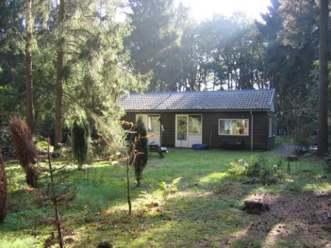 Huis in Zeegse te huur voor 4 personen - Advertentie no 3064