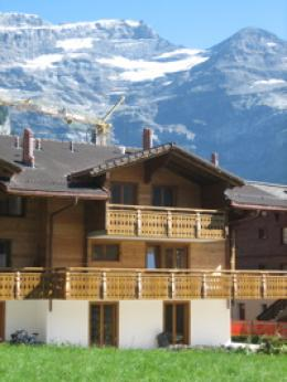 Flat in Les Diablerets - Vacation, holiday rental ad # 3116 Picture #0