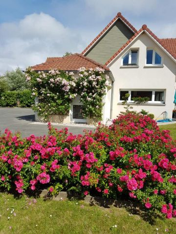 Bed and Breakfast in Berck sur mer - Vacation, holiday rental ad # 3538 Picture #0