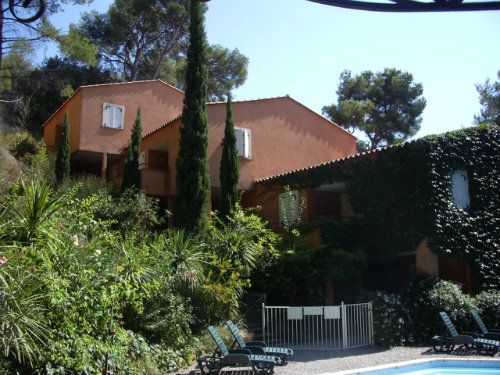Flat in Bandol - Vacation, holiday rental ad # 3690 Picture #9