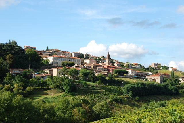 Gite à Vaux en beaujolais pour  12 •   avec terrasse