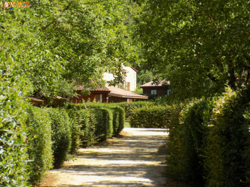 Chalet in Sarlat - Vacation, holiday rental ad # 5021 Picture #17