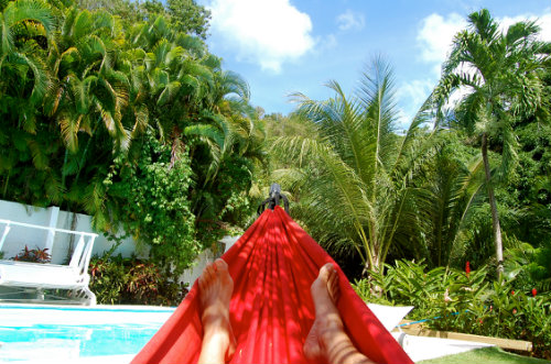 Gite Deshaies - 4 personnes - location vacances  n°5299