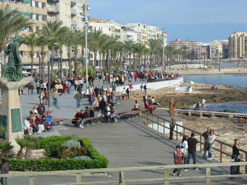 Flat in TORREVIEJA  - Vacation, holiday rental ad # 5322 Picture #17