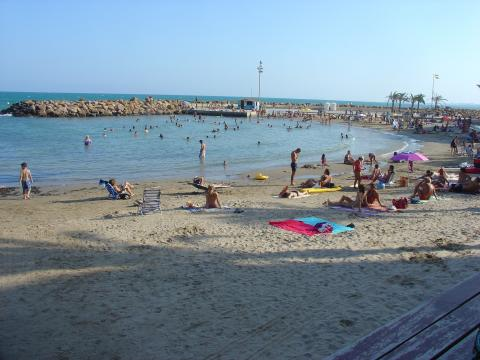 Flat in TORREVIEJA  - Vacation, holiday rental ad # 5322 Picture #4