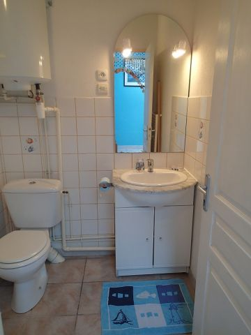 Gite in Vannes - Vacation, holiday rental ad # 5536 Picture #5