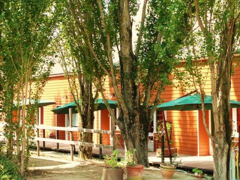 Gite à Carcassonne à louer pour 7 personnes - location n°5668
