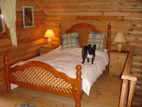 Chalet in Hotton ( Biron) - Vacation, holiday rental ad # 5730 Picture #4
