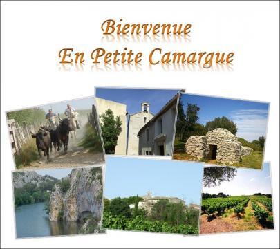 Gite Saturargues - 4 personnes - location vacances  n°6331