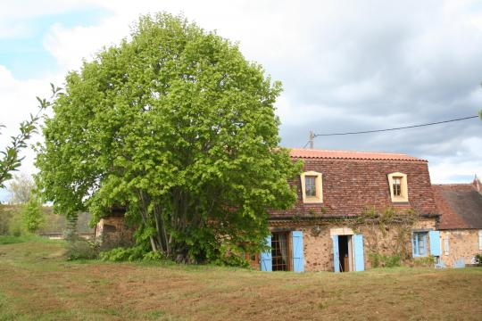 Farm in Au bugue - Vacation, holiday rental ad # 6700 Picture #0