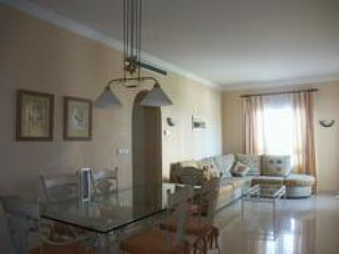Flat in oliva  nova - Vacation, holiday rental ad # 6769 Picture #3