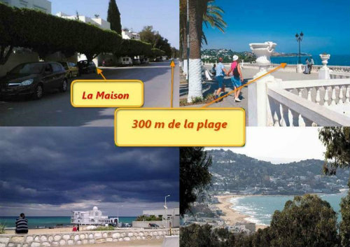 Maison La Marsa Tunisie - 3 personnes - location vacances  n°6866