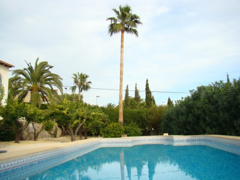 House in La nucia for rent for  8 people - rental ad #7268
