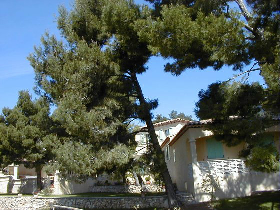 Gite Maussane Les Alpilles - 4 personnes - location vacances  n°794