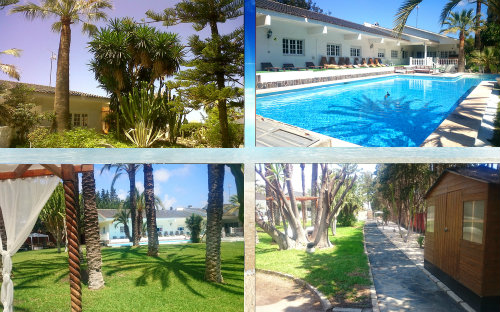 Farm in Alicante - Vacation, holiday rental ad # 8150 Picture #9