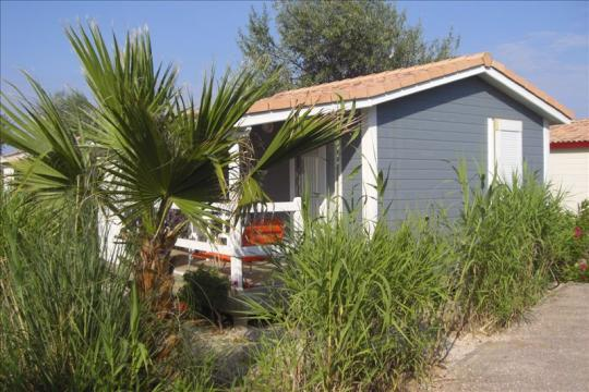 Bungalow in Gruissan - Vacation, holiday rental ad # 8403 Picture #3