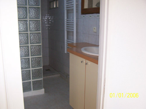 House in giens - Vacation, holiday rental ad # 8629 Picture #12