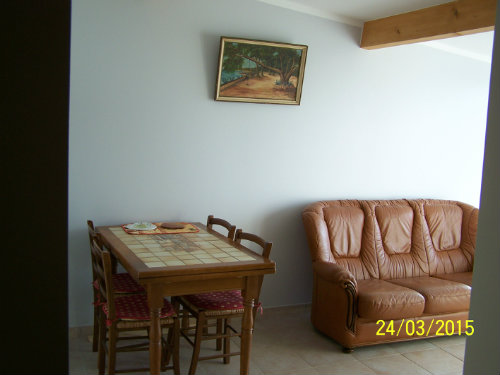 House in giens - Vacation, holiday rental ad # 8629 Picture #6