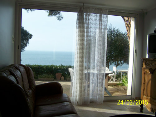 House in giens - Vacation, holiday rental ad # 8629 Picture #8