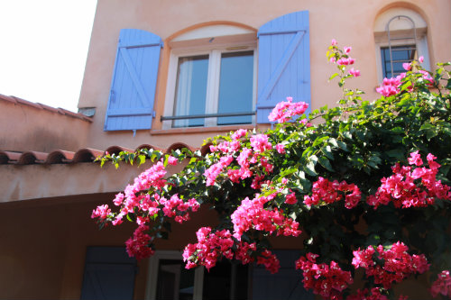 House in Biot - Vacation, holiday rental ad # 8656 Picture #19