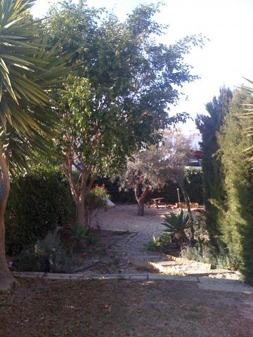House in Alicante - Vacation, holiday rental ad # 8665 Picture #5