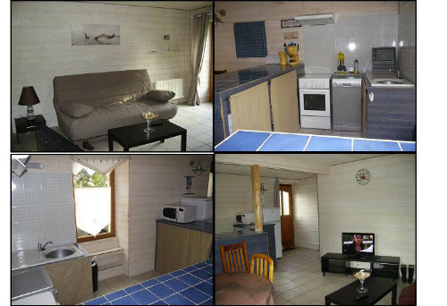 House Carnac - 6 people - holiday home  #8787