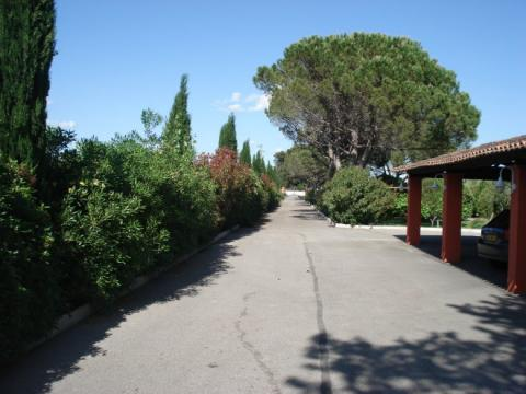 House in Arles - Vacation, holiday rental ad # 9285 Picture #1