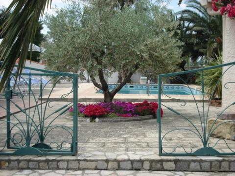 House in Arles - Vacation, holiday rental ad # 9285 Picture #2
