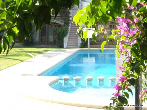 Flat in Denia - Vacation, holiday rental ad # 9329 Picture #0