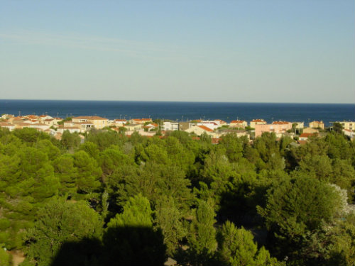 Flat in Narbonne-plage - Vacation, holiday rental ad # 9631 Picture #3