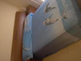 Appartement Cambrils - 6 personnes - location vacances  n°10316