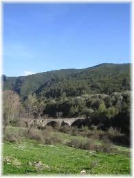 Maison Piedicorte-di-caggio - 6 personnes - location vacances  n°10411