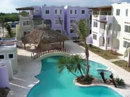 Playa dominicus -    animaux acceptés (chien, chat...)