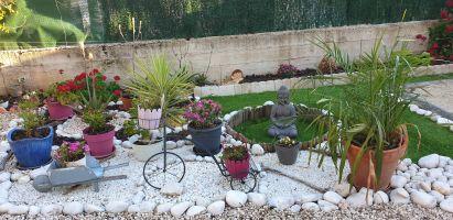 Maison 4 personnes Le Lavandou - location vacances  n°10649