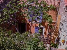 Maison 6 personnes Fitou - location vacances  n°10836