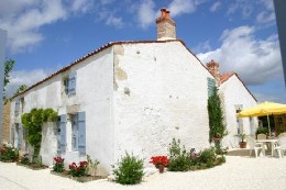 Gite 9 people Saint Aubin La Plaine - holiday home  #11009
