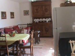 Ferme Maruéjols Les Gardon - 5 personnes - location vacances  n°11500