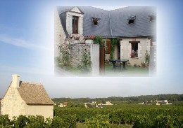 Maison 8 personnes Ingrandes-de-touraine - location vacances  n°11614