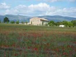 Gite Roumoules - 8 personnes - location vacances  n°11890