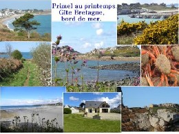 Plougasnou -    view on sea