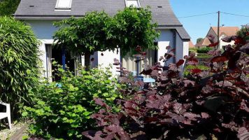 Gite in Hauteville sur mer for   7 •   with terrace   #2125