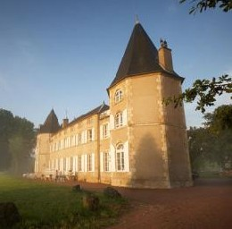 Castle in Neuville les decize for   15 •   with private pool